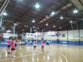 sinoco-led-lit-basket-ball-stadium-1